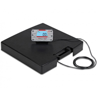 Detecto APEX 600 lb Capacity Scale w/ Remote Indicator & AC Adapter