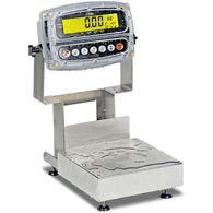 Detecto CA12 Series Admiral Washdown Bench Scales